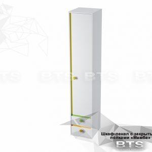 Шкаф пенал1